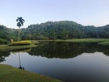 Όμορφα μέρη στη Σρι Λάνκα Bodnical κήπος Sithawaka στοκ εικόνα