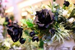 Όμορφα μαύρα τριαντάφυλλα που ανθίζουν στον κήπο για το υπόβαθρο ή τη σύσταση, ημέρα βαλεντίνων ` s Στοκ Εικόνα