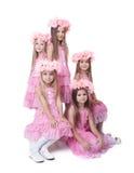 Όμορφα μικρά κορίτσια στα ρόδινα φορέματα και τα στεφάνια στοκ εικόνα με δικαίωμα ελεύθερης χρήσης