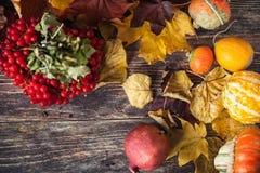 Όμορφα μούρα Viburnum το φθινόπωρο με την κολοκύθα και τα ξηρά φύλλα Στοκ φωτογραφία με δικαίωμα ελεύθερης χρήσης