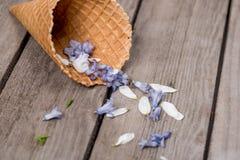 Όμορφα μπλε πέταλα στον κώνο γκοφρετών στο ξύλινο υπόβαθρο Στοκ Φωτογραφία
