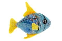Όμορφα μπλε ψάρια ενυδρείων φιαγμένα από μαλλί Στοκ Εικόνα