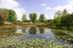 Όμορφα νερά του Μίτσιγκαν Στοκ Εικόνες