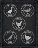 Όμορφα ορτύκια χήνων παπιών της Τουρκίας κοτόπουλου εικονιδίων Στοκ φωτογραφία με δικαίωμα ελεύθερης χρήσης