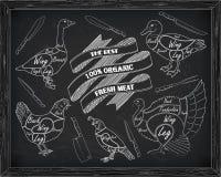 Όμορφα ορτύκια χήνων παπιών της Τουρκίας κοτόπουλου σχεδίου τέμνοντα Στοκ Φωτογραφία