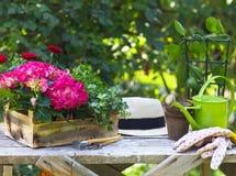 Όμορφα λουλούδια άνοιξη και και εργαλεία gargen στο επιτραπέζιο outdo Στοκ φωτογραφίες με δικαίωμα ελεύθερης χρήσης
