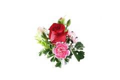 όμορφα λουλούδια ανθο&delta Στοκ φωτογραφίες με δικαίωμα ελεύθερης χρήσης