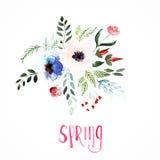 Όμορφα λουλούδια, ζωγραφική Watercolor Στοκ εικόνα με δικαίωμα ελεύθερης χρήσης