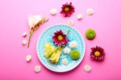 Όμορφα λουλούδια και πιάτο στο ρόδινο υπόβαθρο, υπερυψωμένη άποψη Στοκ Εικόνα