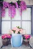 Όμορφα λουλούδια και τριαντάφυλλα άνοιξη στο κιβώτιο Στοκ Φωτογραφία
