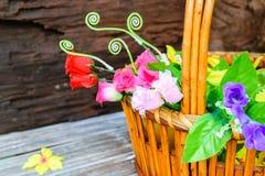 όμορφα λουλούδια καλα&the Στοκ Εικόνες