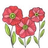 Όμορφα λουλούδια παπαρουνών καθορισμένα, ζωηρόχρωμη διανυσματική κάρτα διακοπών Στοκ φωτογραφία με δικαίωμα ελεύθερης χρήσης