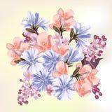 Όμορφα λουλούδια τομέων για το σας Στοκ Εικόνα