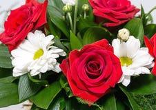 όμορφα λουλούδια στοκ φωτογραφία