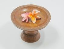 Όμορφα λουλούδια Plumeria στον εκλεκτής ποιότητας ξύλινο δίσκο Στοκ Εικόνες