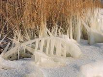 Όμορφα παγάκια πάγου στην ακτή λιμνών, Λιθουανία Στοκ φωτογραφίες με δικαίωμα ελεύθερης χρήσης