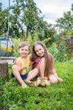 Όμορφα παιδιά, που παίζουν με τους μικρούς νεοσσούς στοκ εικόνα