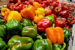 Όμορφα πολύχρωμα φρέσκα πιπέρια στο μανάβικο στοκ φωτογραφίες με δικαίωμα ελεύθερης χρήσης