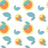 Όμορφα πορτοκαλιά φρούτα και φύλλα σχεδίων στο άσπρο υπόβαθρο απεικόνιση αποθεμάτων