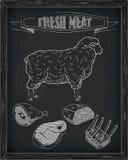Όμορφα πρόβατα και τέμνον σχέδιο κρέατος Στοκ Εικόνες