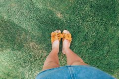 Όμορφα πόδια γυναικών στη τοπ άποψη χλόης στοκ εικόνα