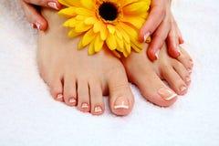 Όμορφα πόδια με το τέλειο γαλλικό καρφί SPA Στοκ φωτογραφία με δικαίωμα ελεύθερης χρήσης