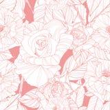 όμορφα ρόδινα τριαντάφυλλα προτύπων άνευ ραφής Στοκ Εικόνα