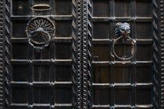 Όμορφα ρόπτρα πορτών Στοκ εικόνες με δικαίωμα ελεύθερης χρήσης