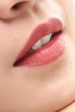 Όμορφα στενά επάνω χείλια γυναικών και στοματικά ανοικτά άσπρα δόντια στοκ φωτογραφία με δικαίωμα ελεύθερης χρήσης