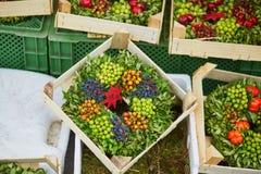 Όμορφα στεφάνια φθινοπώρου με τις εγκαταστάσεις και τα μούρα Στοκ φωτογραφία με δικαίωμα ελεύθερης χρήσης