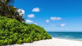 Όμορφα σύννεφα στην παραλία κοντά στον ωκεάνιο timelapse απόθεμα βίντεο