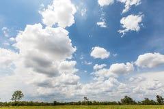 Όμορφα σύννεφα στον ουρανό με τους τομείς ορυζώνα ρυζιού στο φως του ήλιου απογεύματος της Ταϊλάνδης Στοκ Φωτογραφία