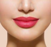 Όμορφα τέλεια χείλια Στοκ εικόνα με δικαίωμα ελεύθερης χρήσης