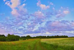 Όμορφα τοπία της φύσης της Λευκορωσίας στοκ φωτογραφίες