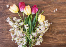 Όμορφα τουλίπες και κάστανα λουλουδιών Στοκ εικόνες με δικαίωμα ελεύθερης χρήσης