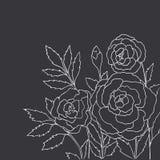 Όμορφα τριαντάφυλλα στη μαύρη ανασκόπηση συρμένο διάνυσμα χεριών Στοκ Εικόνες