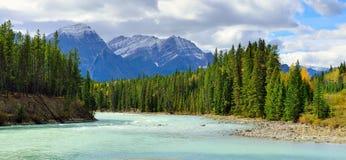 Όμορφα υψηλά βουνά του Canadian Rockies και ενός αλπικού ποταμού κατά μήκος του χώρου στάθμευσης Icefields μεταξύ Banff και της ι στοκ εικόνα