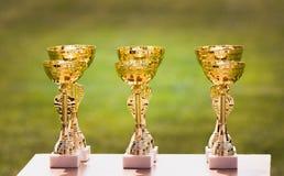 Όμορφα φλυτζάνια τροπαίων πρωτοπόρων χρυσά για τους νικητές στο ποδόσφαιρο comp Στοκ Φωτογραφίες