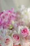 Όμορφα φρέσκα ρόδινα τριαντάφυλλα στο ελαφρύ υπόβαθρο Στοκ Φωτογραφίες