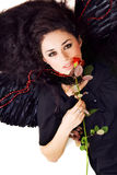 όμορφα φτερά πορτρέτου brunette α&ga Στοκ εικόνα με δικαίωμα ελεύθερης χρήσης