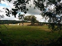 Όμορφα φω'τα που διαδίδουν σε ένα μικρό αγρόκτημα στοκ φωτογραφίες με δικαίωμα ελεύθερης χρήσης