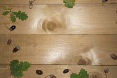 Όμορφα φύλλα σφενδάμου στο εκλεκτής ποιότητας ξύλινο σχέδιο συνόρων υποβάθρου εκλεκτής ποιότητας τόνος χρώματος - έννοια των φύλλ Στοκ εικόνες με δικαίωμα ελεύθερης χρήσης