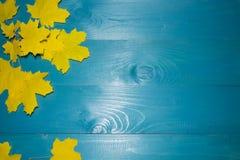 Όμορφα φύλλα σφενδάμου στο εκλεκτής ποιότητας ξύλινο σχέδιο συνόρων υποβάθρου εκλεκτής ποιότητας τόνος χρώματος - έννοια των φύλλ Στοκ Εικόνα
