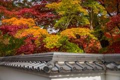 Όμορφα φύλλα χρώματος φθινοπώρου στο ναό Eikando Στοκ εικόνες με δικαίωμα ελεύθερης χρήσης