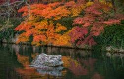 Όμορφα φύλλα χρώματος φθινοπώρου στο ναό Eikando Στοκ Φωτογραφίες