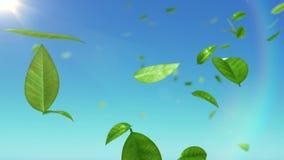 Όμορφα φύλλα που πετούν στον ουρανό με τον ήλιο διανυσματική απεικόνιση
