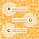 Όμορφα φύλλα φθινοπώρου με infographic Στοκ φωτογραφία με δικαίωμα ελεύθερης χρήσης