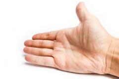 Όμορφα χέρια σε ένα άσπρο υπόβαθρο στοκ εικόνες με δικαίωμα ελεύθερης χρήσης