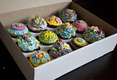 12 όμορφα cupcakes σε ένα κιβώτιο Στοκ Εικόνες