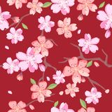 Όμορφα floral σχέδια στο ιαπωνικό ύφος Στοκ Εικόνες